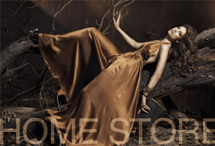 Home Store Campaign